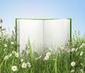 Opened blank book Royalty Free Stock Photo