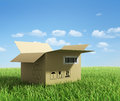 Opened box on green grass. Royalty Free Stock Photo