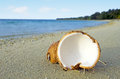 Opened coconut on sandy sea shore of tropical island Stock Photos