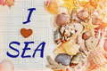 Opened diary with a tagline covered by sea shells Royalty Free Stock Photo