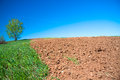 The opened field in the spring for crops Royalty Free Stock Images
