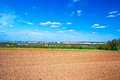 The opened field in the spring for crops Royalty Free Stock Image