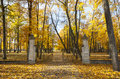 Opened gate in autumn old metal gateway front of beautiful colorful park at Stock Images