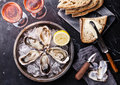 Opened oysters with dark bread with butter on metal plate and rose wine on marble background Stock Image