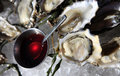 Opened oysters on ice with red souse Stock Photos