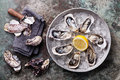 Opened Oysters on metal plate with ice and lemon Royalty Free Stock Photo