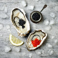 Opened oysters with red salmon and black sturgeon caviar and lemon on ice on grey concrete background. Top view, flat lay Royalty Free Stock Photo