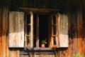 Opened window Royalty Free Stock Photo