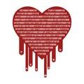OpenSSL Heartbleed