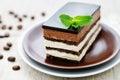 Opera cake Royalty Free Stock Photo