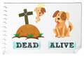 Opposite adjective with dead and alive illustration Royalty Free Stock Images