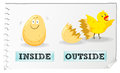 Opposite adjectives inside and outside Royalty Free Stock Photo