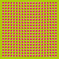 The optical illusion of movement executed in the form of fluctuating pink and white circles op art green background Royalty Free Stock Photos