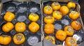 Orang persimmons kaki fruits in box fresh Stock Image