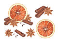 Orange anise and cinnamon sticks watercolor illustration of christmas spices Royalty Free Stock Image