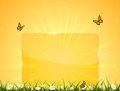 Orange background with banner butterflies illustration Royalty Free Stock Photo