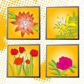 Orange background with flowers Royalty Free Stock Photos