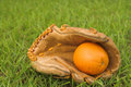 An Orange in a Baseball Glove Stock Photos