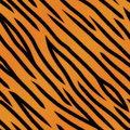 An orange and black tiger striped background seamlessly repeatable Stock Photography