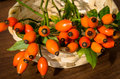 Orange briar group of decoration Royalty Free Stock Photography