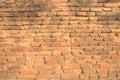 Orange brick wall with tiny green plant between some bricks background texture Stock Photo