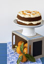Orange cake Royalty Free Stock Photo