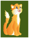 Orange cat illustration of positive interested cartoon isolated on the green background Stock Images
