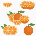 Orange. Citrus fruit with leaf - whole, half, slice. Vector. Royalty Free Stock Photo