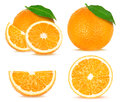 Orange collage Royalty Free Stock Photo