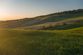 Orange colored field in tuscan landscape at sunset panoramic view on by the setting sun Royalty Free Stock Photography