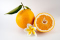 Orange cut in half with flower Stock Image