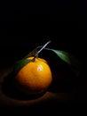 Orange in the dark fruit ttzanzone food black z f blackbackground Stock Photo