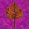 Orange decorative leaf. Royalty Free Stock Photo