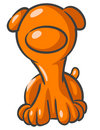 Orange Dog Stock Photos