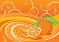 Orange elements Stock Images