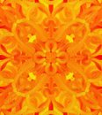 Orange fantasy abstract background color Stock Photo