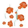 Orange fish isolated on white background vector illustration Royalty Free Stock Image