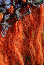 Orange fishing net drying in the sun Royalty Free Stock Photo