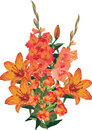 Orange flower decoration on white Stock Images