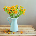 Orange flowers in blue jug on wooden table Stock Photography