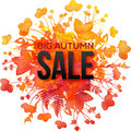 Orange foliage splash big autumn sale banner vector Stock Photos