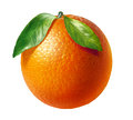 Orange fresh fruit with two leaves, at white background. Royalty Free Stock Photo