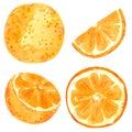Orange fruit clipart set. Hand drawn watercolor illustration