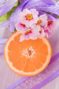 Orange fruit and pink blossom flower decoration Stock Image