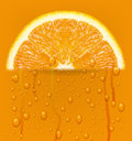 Orange fruit with water drops background vector illustration Royalty Free Stock Photo