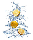 Orange fruit and water splash christmas tree on a white background Stock Image