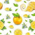 Orange fruits ripe with green leaves. Watercolor drawing. Handwork. Tropical fruit. Healthy food. Seamless pattern for design Royalty Free Stock Photo