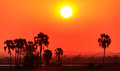 Orange glow sunset in a African landscape Royalty Free Stock Photo