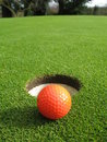 Orange golf ball Stock Image