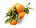 Orange green leaves one fruit with isolated on white Royalty Free Stock Photo